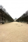 Allée des Jardins du Palais Royal